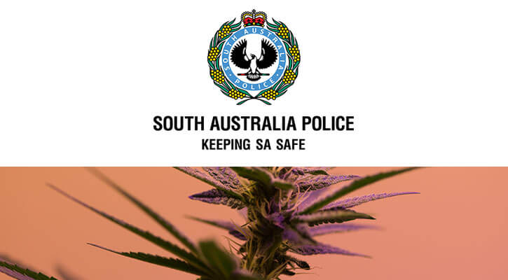 Image result for australian police and cannabis