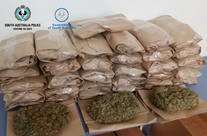 Cannabis being sent from SA to NSW seized