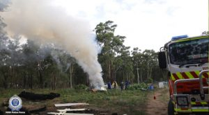 Cannabis lit on fire in Australia