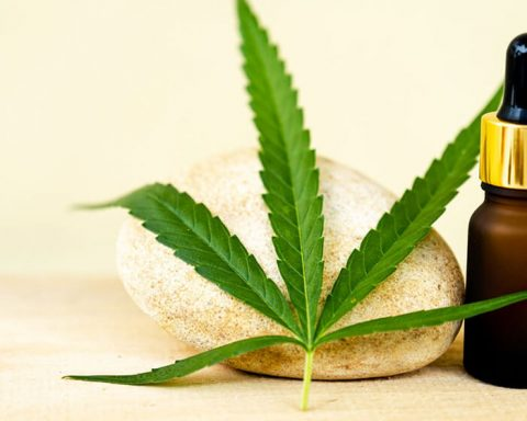 CBD oil continues to remain high priced in Australia