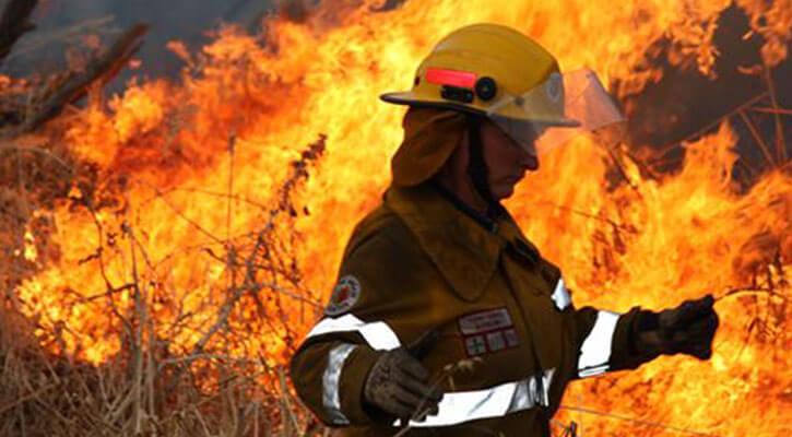 Cannabis crop burning in Australian bush