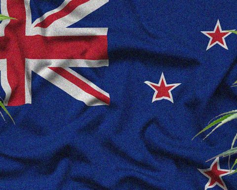 Cannabis plants on a New Zealand flag