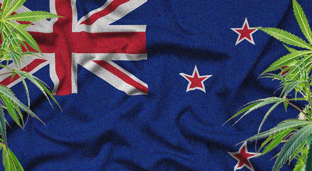 Cannabis plants on a New Zealand flag