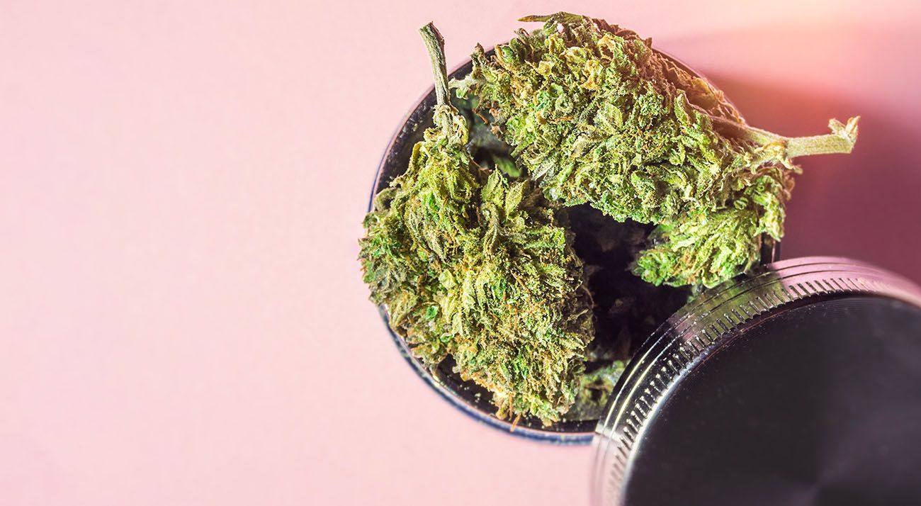 Marijuana buds in a jar on a pink background