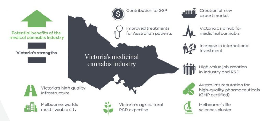 Victorias plans for their medicinal cannabis industry 1