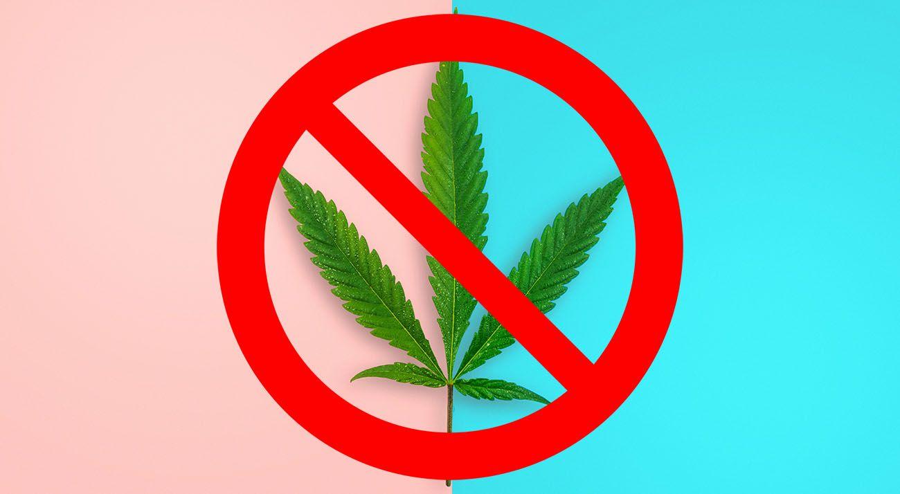 Cancel cannabis