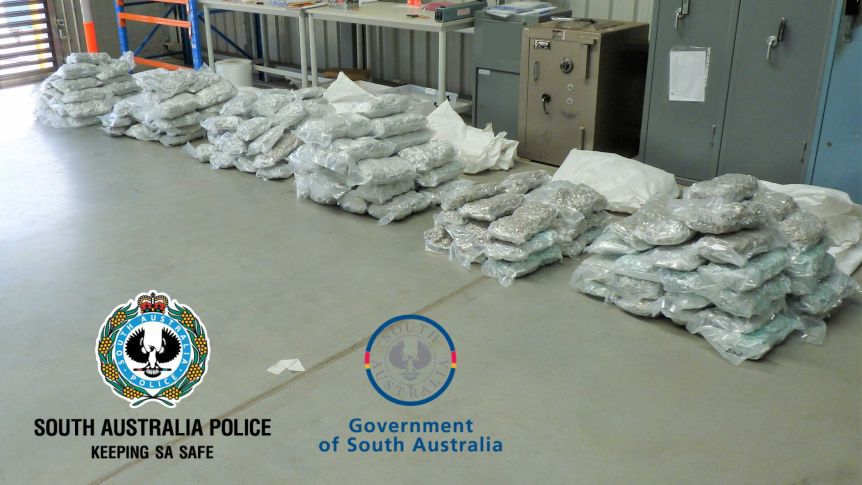 The haul of cannabis seized in South Australia