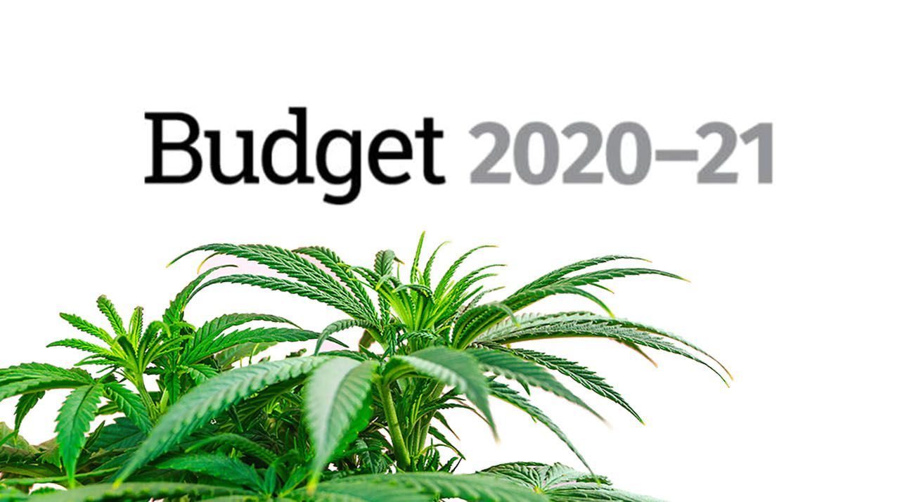 Australian government budget and cannabis support
