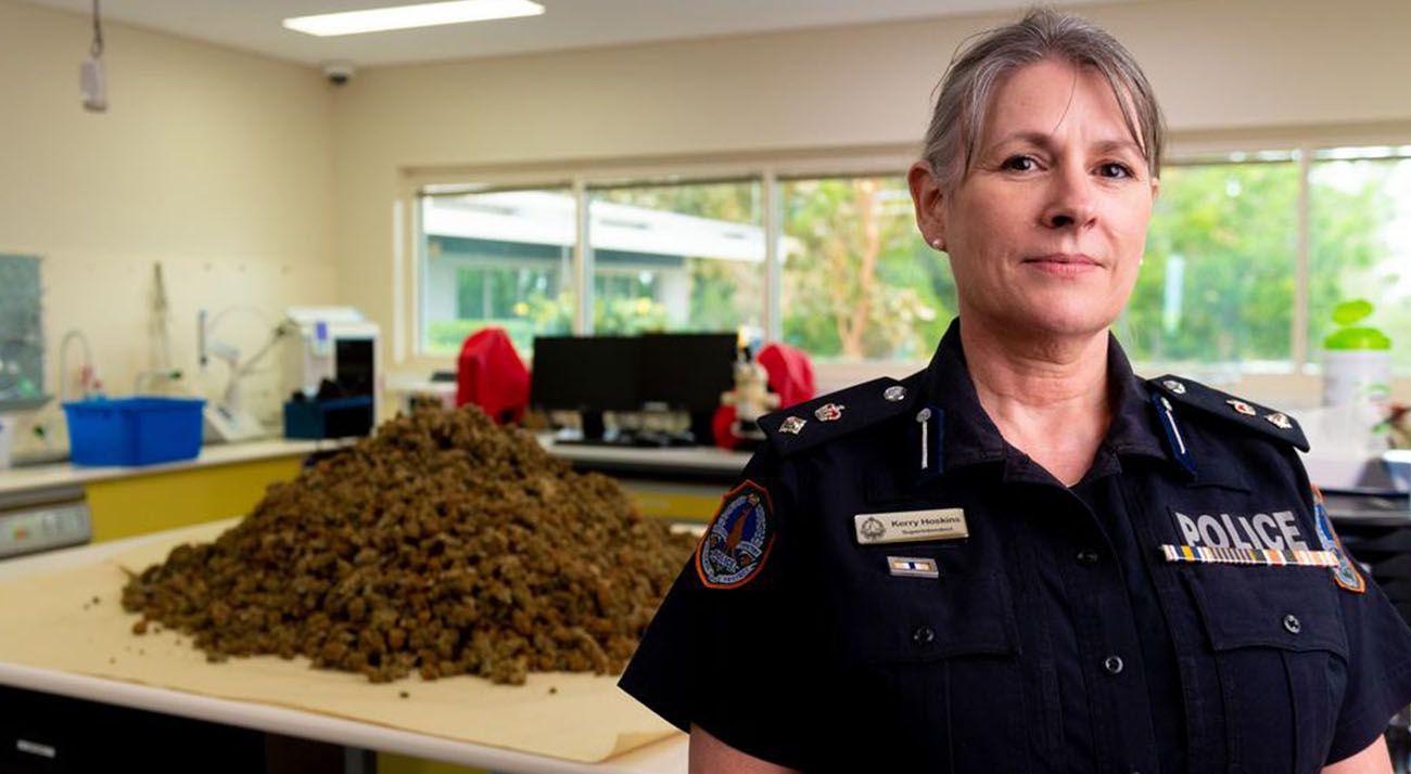 Northern Territory police showcasing a cannabis seizure