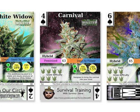 Popular cannabis trading cards