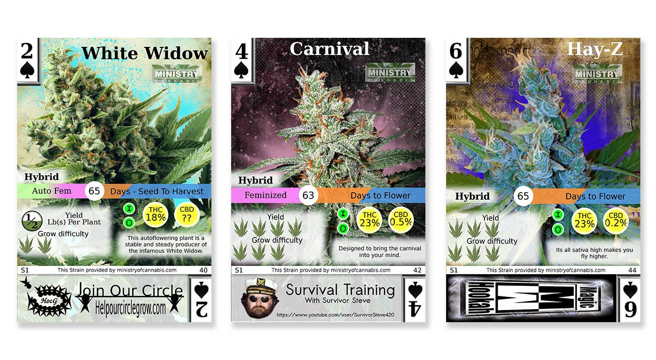 Popular cannabis trading cards