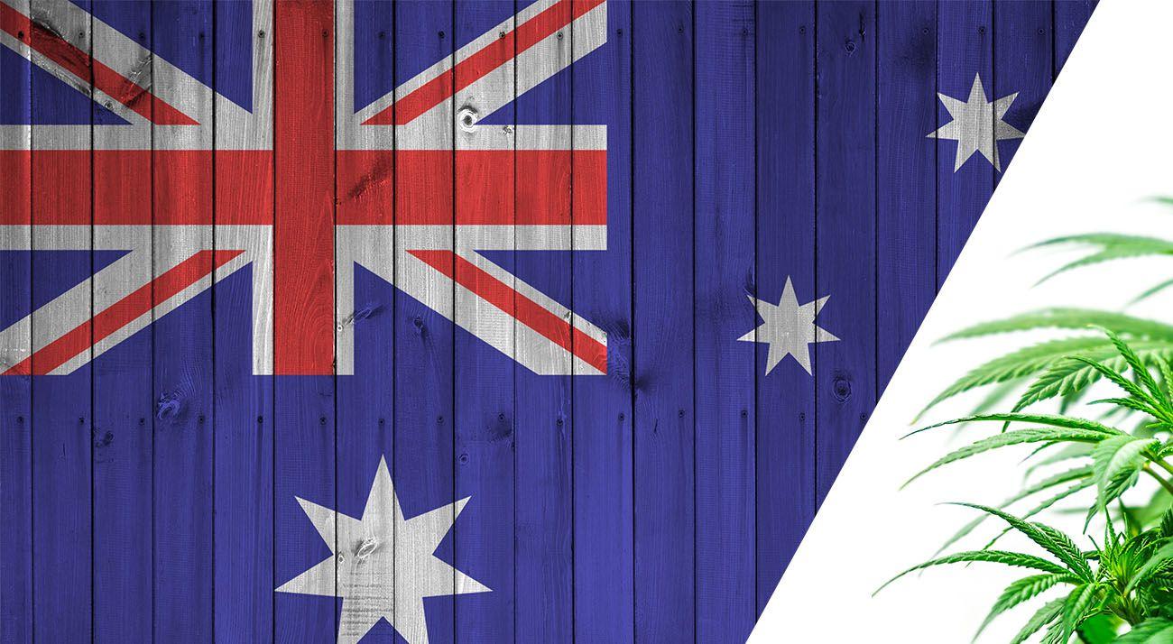 Australia and cannabis