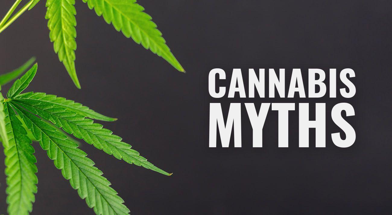 Cannabis myths