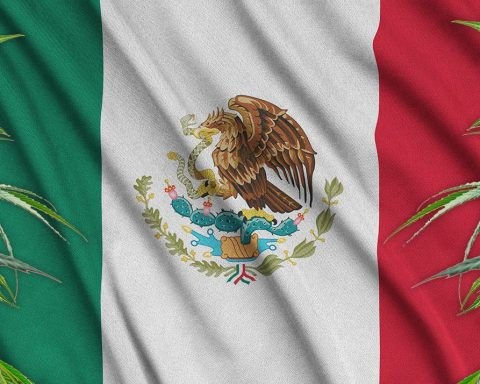 Mexico flag with cannabis leaves