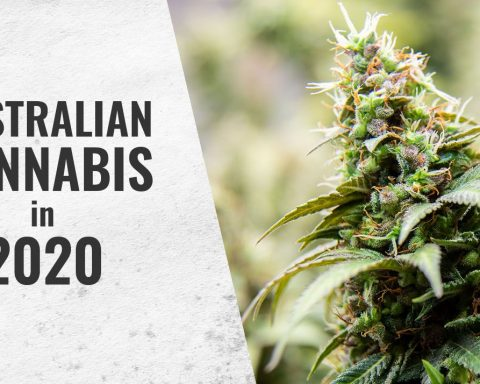 Australian cannabis news in 2020