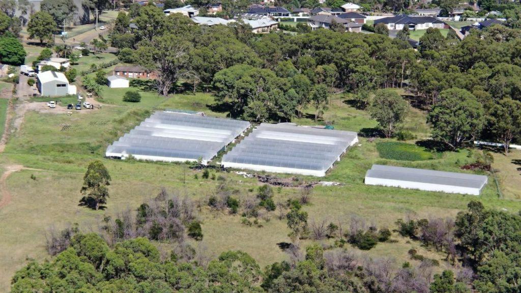 Aerial view of the illegal cannabis farm