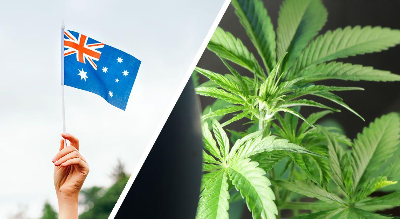 Australian flag cannabis legalisation