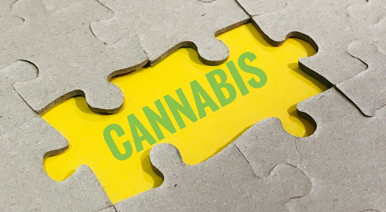 Cannabis in a puzzle
