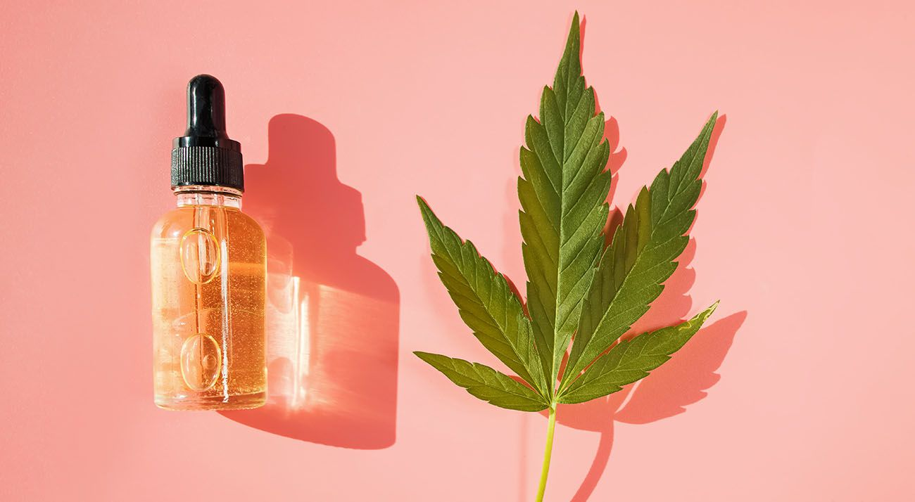 Cannabis leaf and cbd oil on a pink background