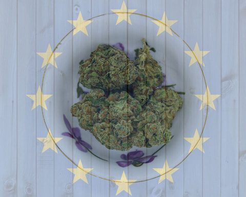 Cannabis on the European Union flag