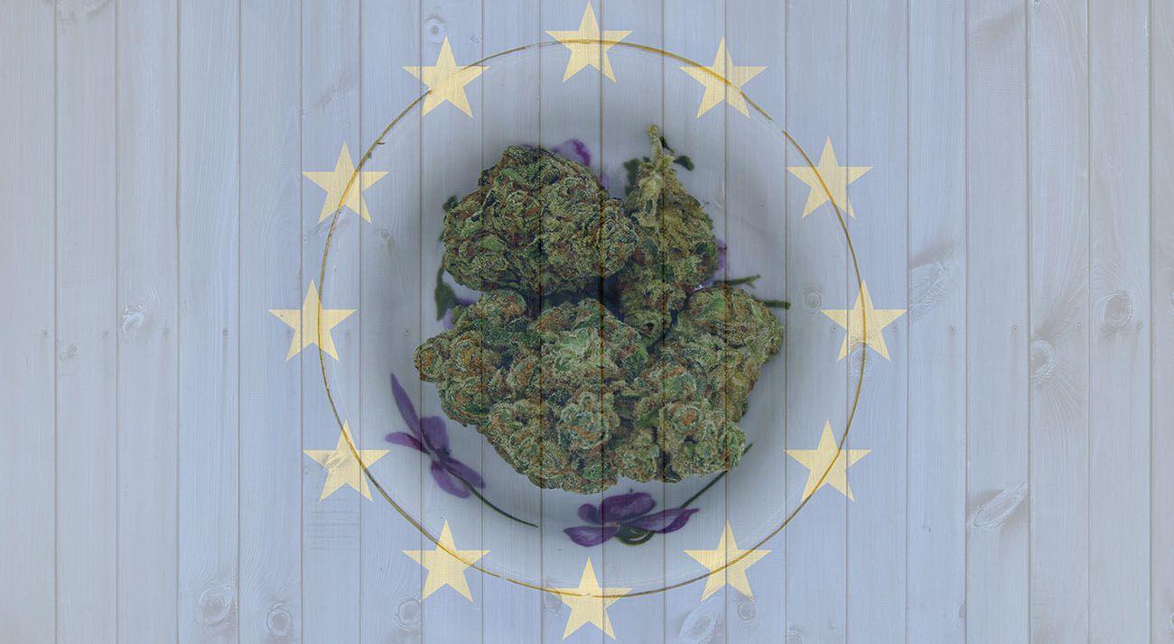 Cannabis on the European Union flag