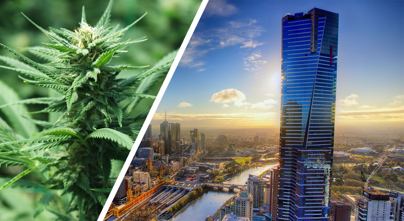 Melbourne city and cannabis photo
