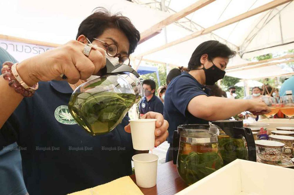 Thailand teaching its citizens how to use cannabis