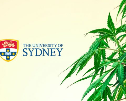 University of Sydney cannabis logo