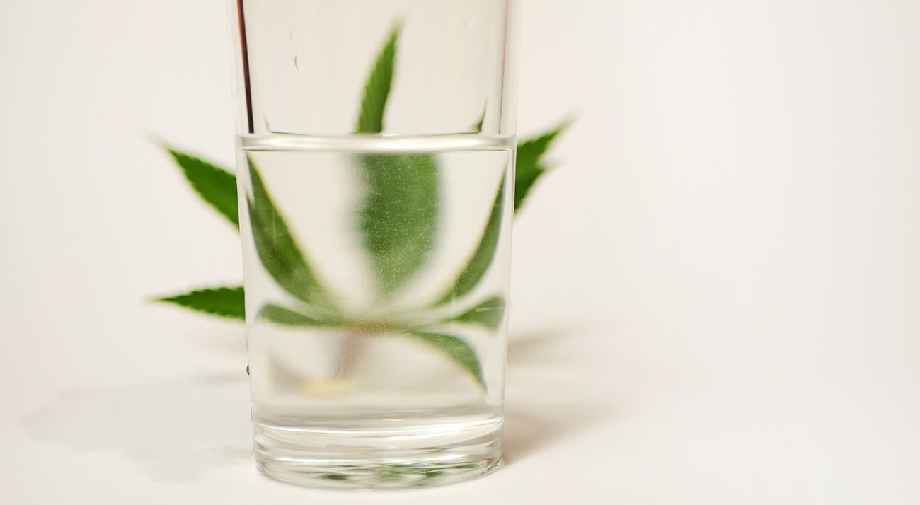 Cannabis behind a glass of water