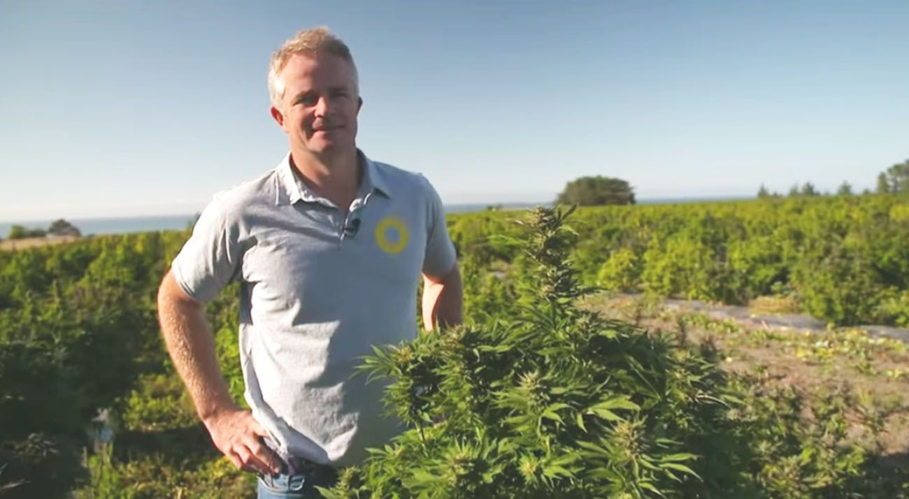 New Zealand medical cannabis company farmer