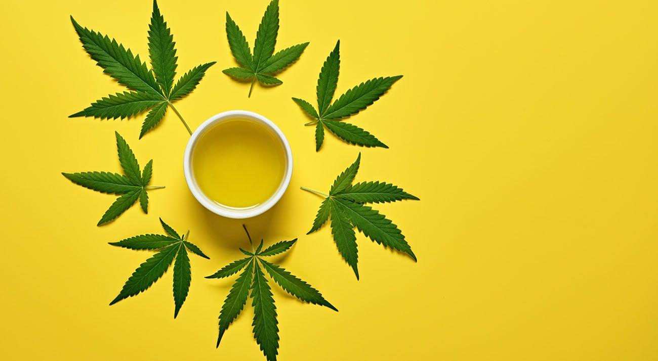 Cannabis leaves surrounding a coffee mug