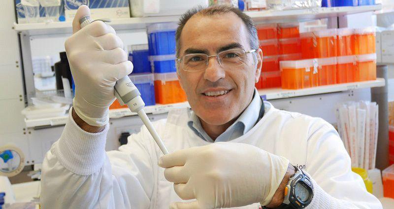 Professor Marco Falasca