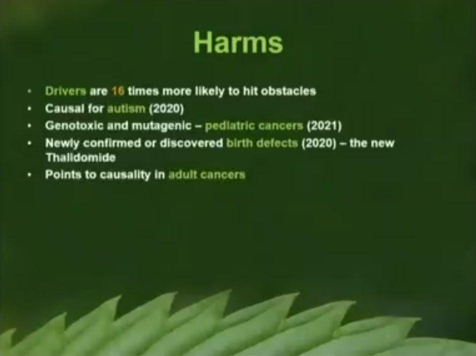 Slide 2 Drug Free Australia