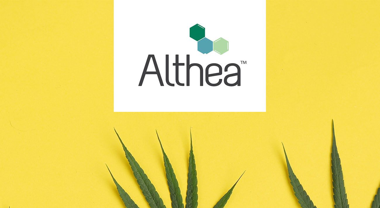 Althea Group logo with cannabis leaf
