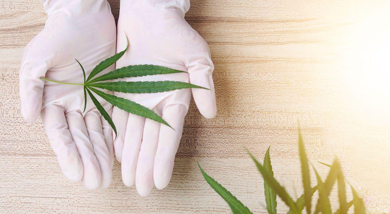 Cannabis as a medicine