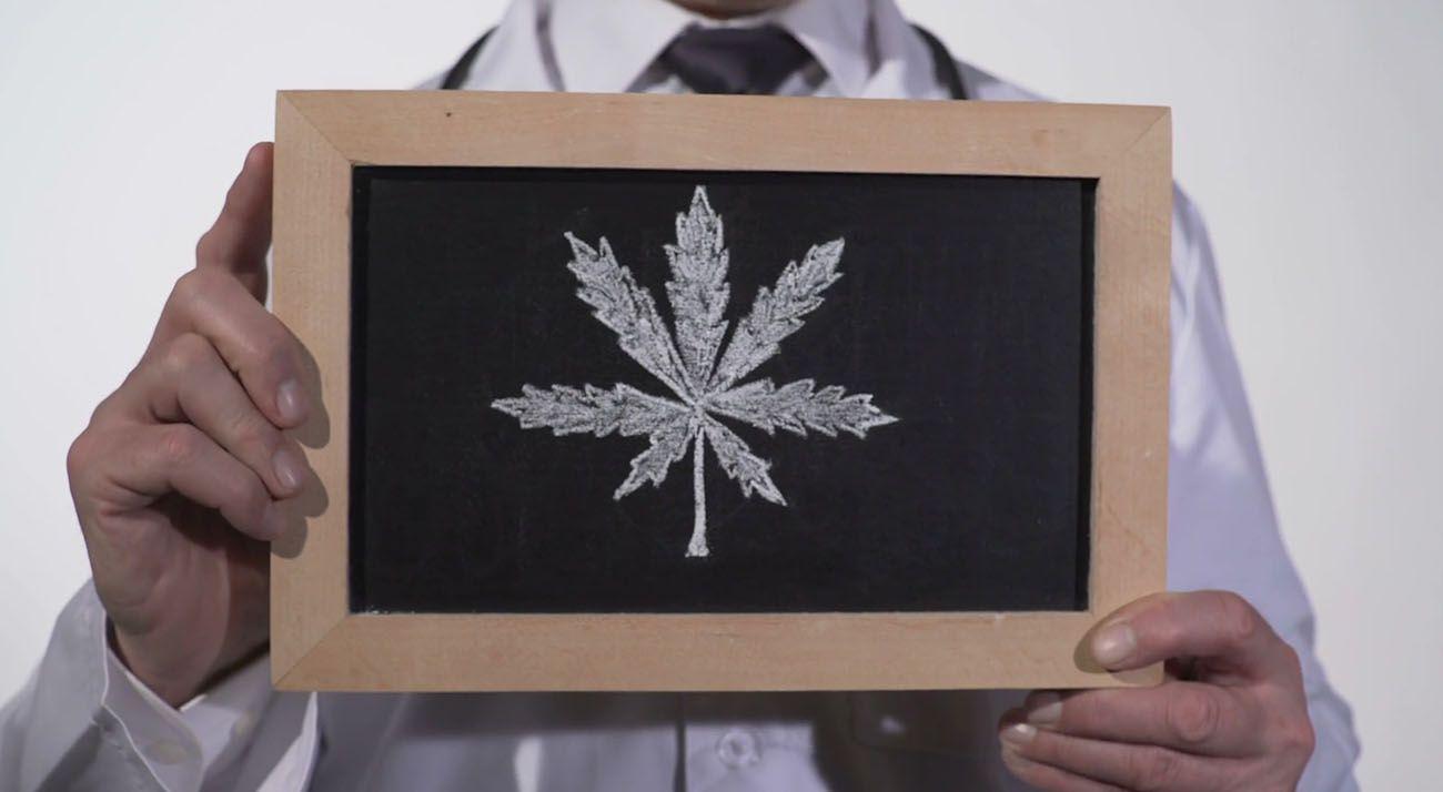 Doctor hold cannabis leaf drawn on chalkboard
