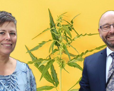 Legalise cannabis WA MPs Brian Walker and Sophia Moermond