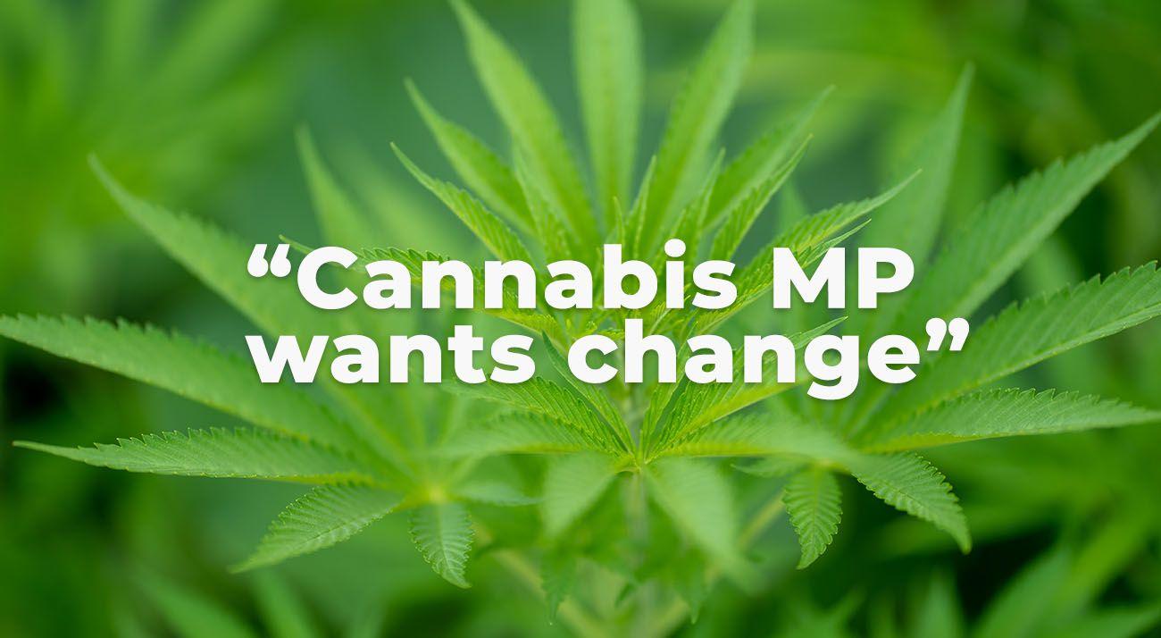 Cannabis mp wants change
