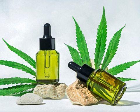 Medical cannabis and hemp oil