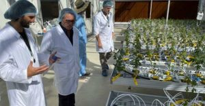 Richard Duce inspecting plants with Canna Pacifics chief grower