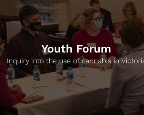 Youth Forum inquiry into the use of cannabis