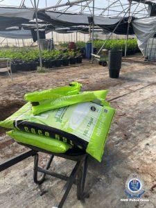 Fertiliser for cannabis plants