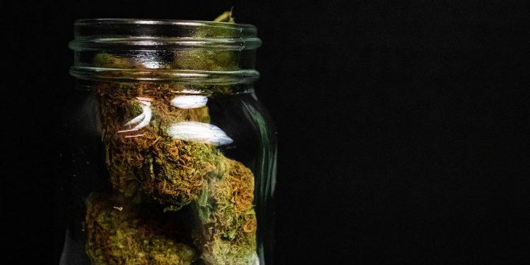 Cannabis buds in a jar on a black background