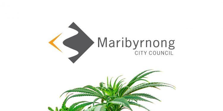 Maribyrnong City Council with cannabis