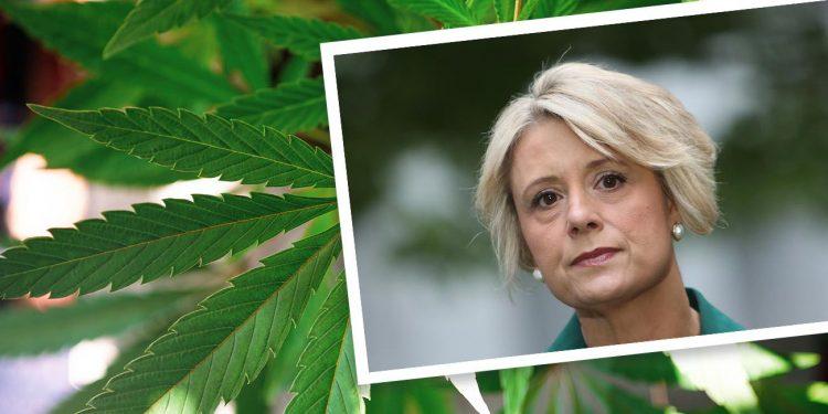 Senator Kristina Keneally on a cannabis background