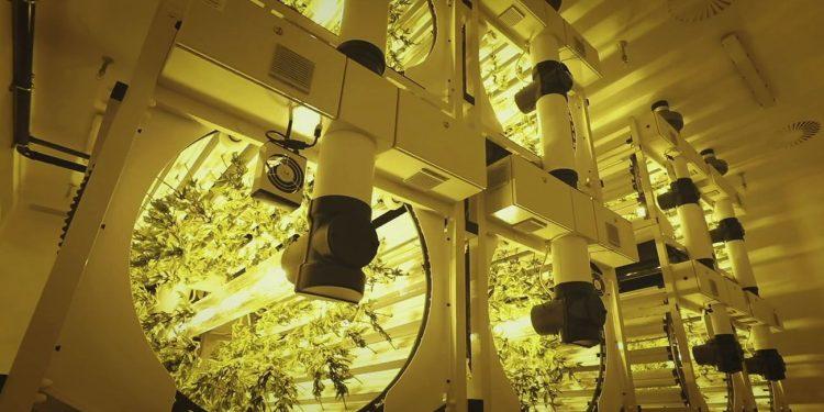 Rotogro cannabis growing system